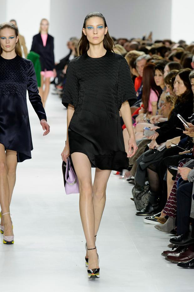 christian-dior-autumn-fall-winter-2014-pfw15