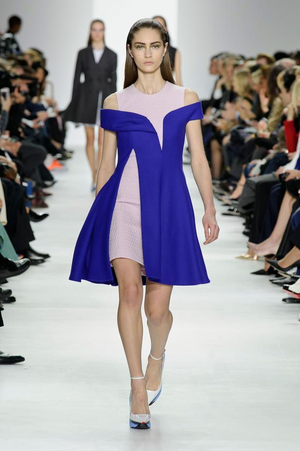 christian-dior-autumn-fall-winter-2014-pfw23