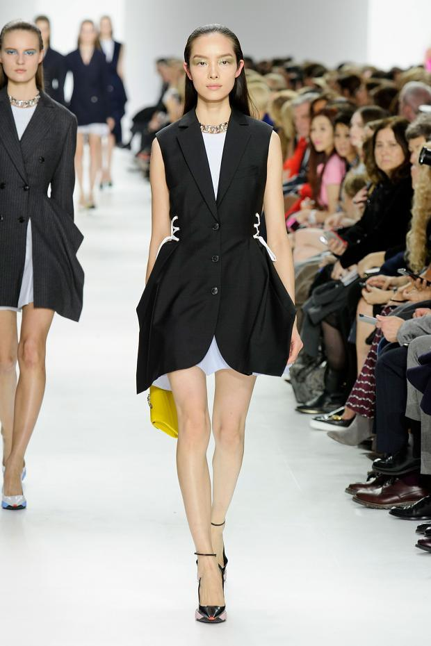 christian-dior-autumn-fall-winter-2014-pfw24